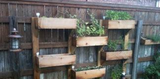 Kupowanie drewnianej donicy ogrodowej – jak nie wyrzucić pieniędzy w błoto?